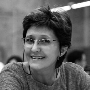 Ermínia Terezinha Menon Maricato